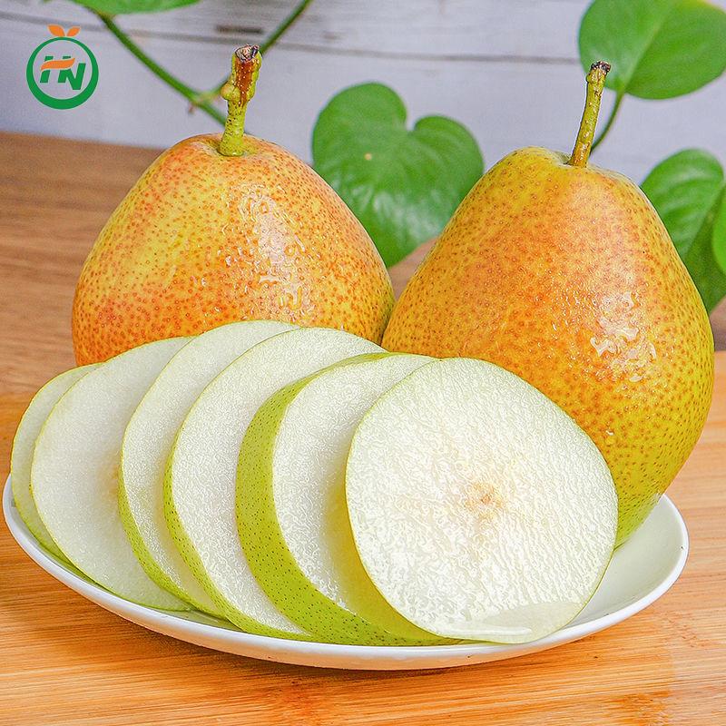 陕西汇农优品红香酥梨2.5kg【偏远及疫情地不发】