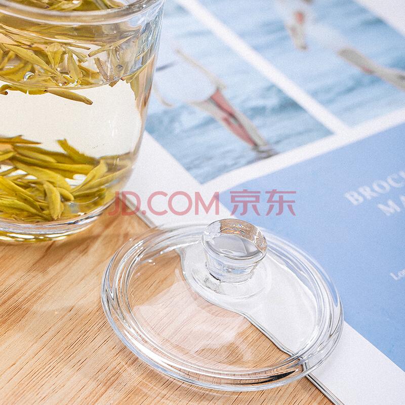 青苹果 玻璃杯 泡茶杯 耐热茶具杯 家居办公会议水杯茶杯380ml,青苹果