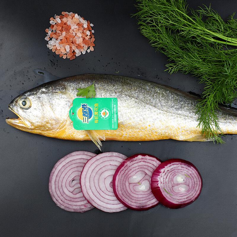 三都港 有机黄花鱼500g 宁德大黄鱼 礼盒装 海鲜水产