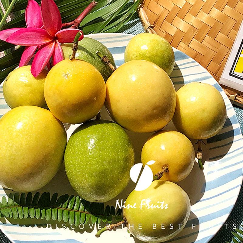 海南陵水黃金芭樂百香果5斤