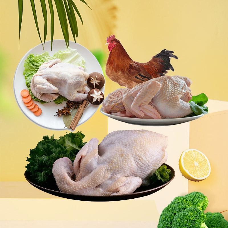 百年栗园公鸡母鸡土鸡三种组合