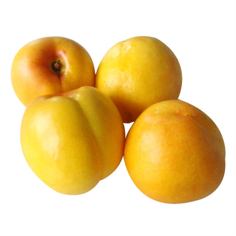 信農宜食 新鮮黃油桃 12粒 當季新鮮水果