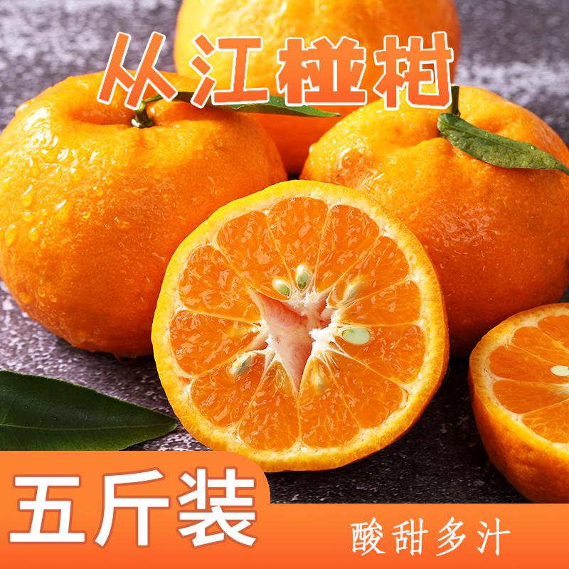 吉高博-贵州山地种植从江椪柑2.5kg 色泽艳丽,皮薄肉厚