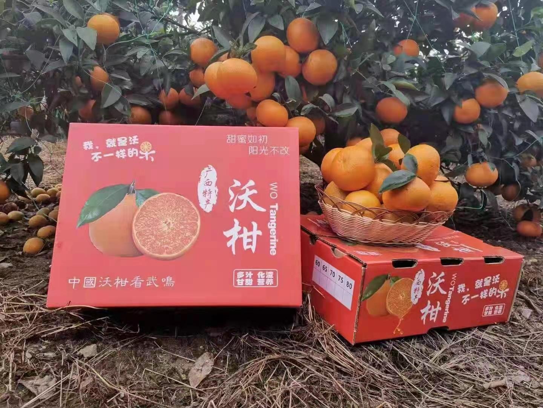 信农宜食 广西特产武鸣沃柑 约10斤